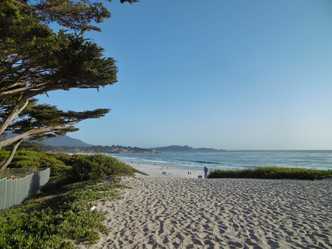 Carmel beach Big Sur California