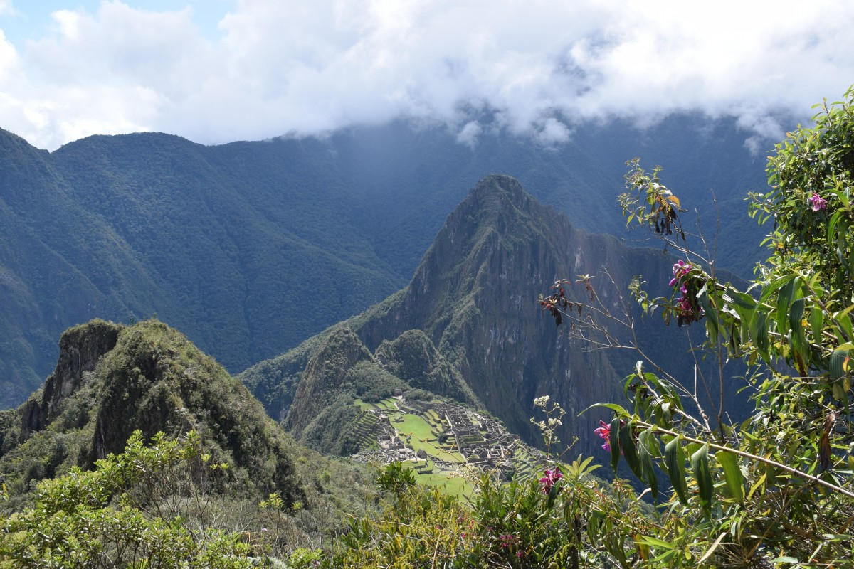 Machu Picchu view with flowers