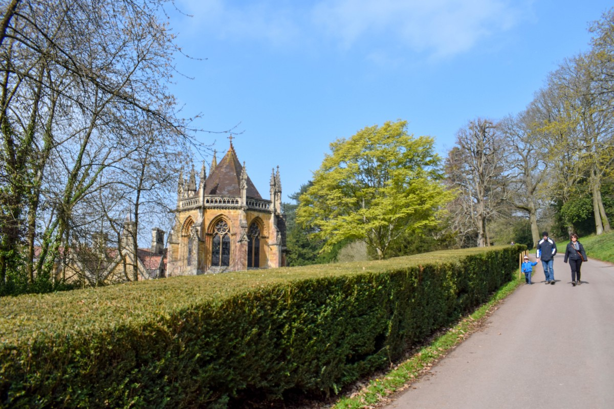 Woodland walk by Tyntesfield Chapel