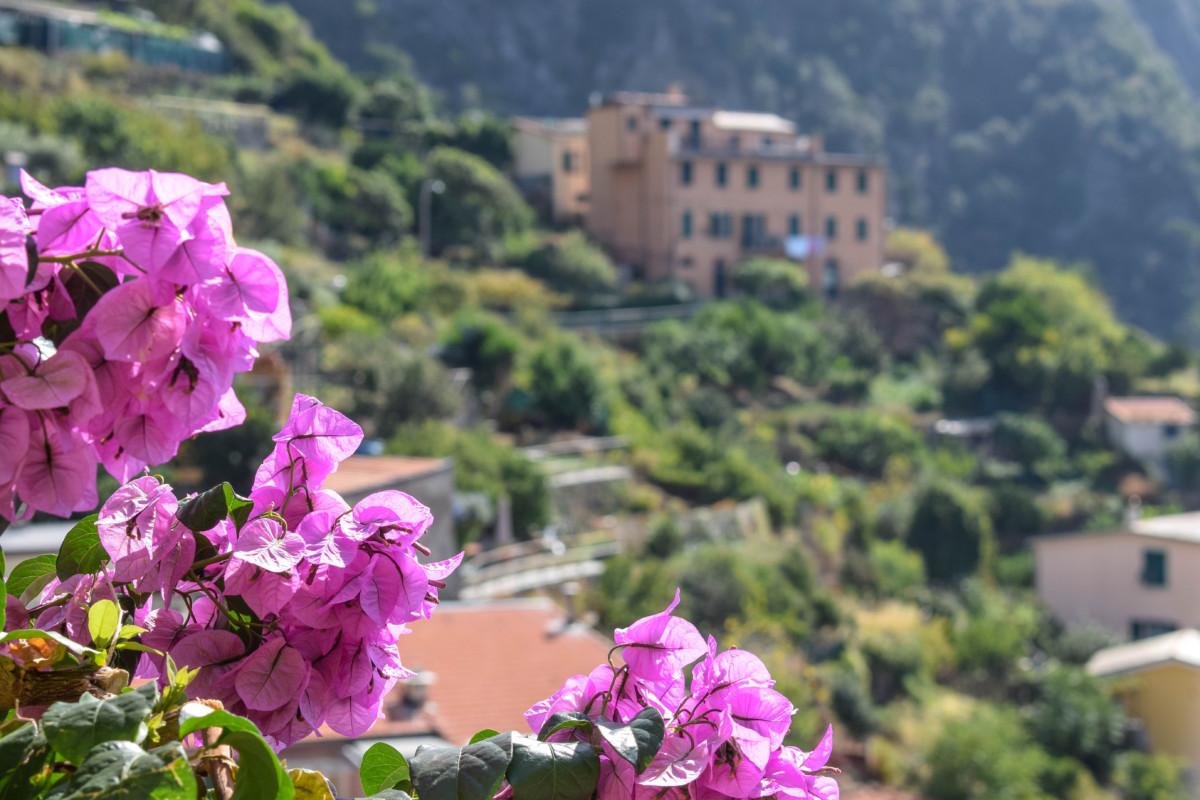 Cinque Terre Riomaggiore Italy