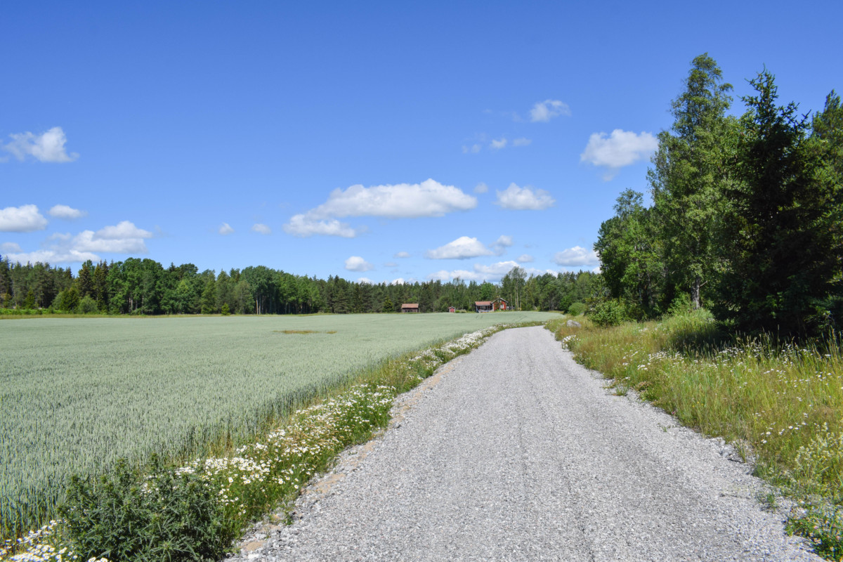Vaxholm hike Sweden day trip from Stockholm