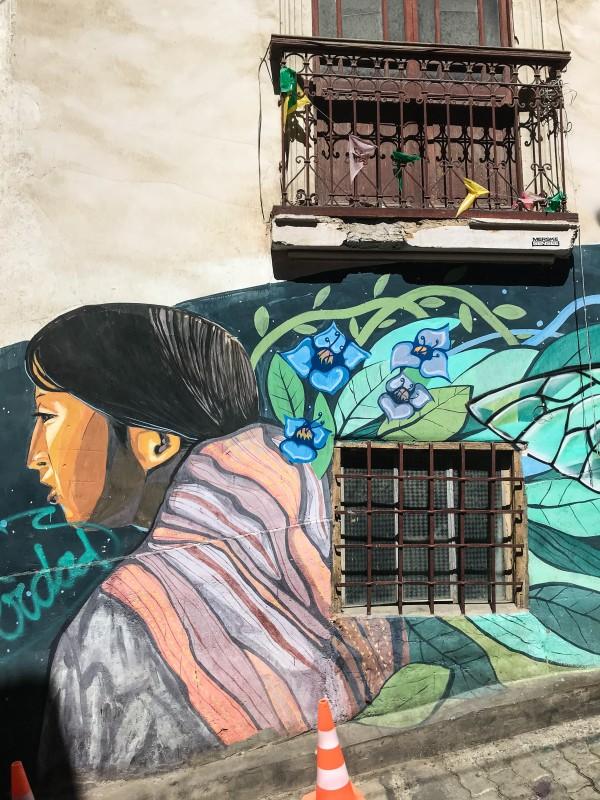 Street art La Paz Bolivia