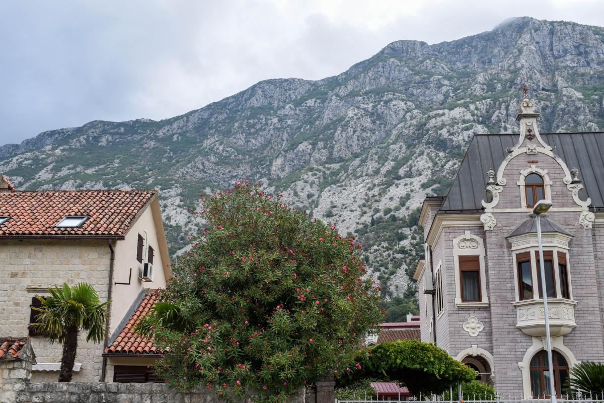 Houses in Dobrota Kotor Bay Montenegro