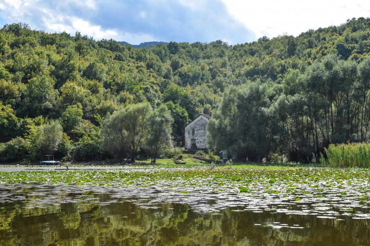 Lake skadar Montenegro scenery